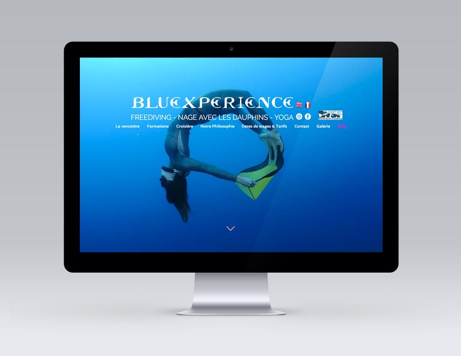 Webdesign-site-Bluexperience-voyages-croisieres-freediving-apnee-plongee-dauphins
